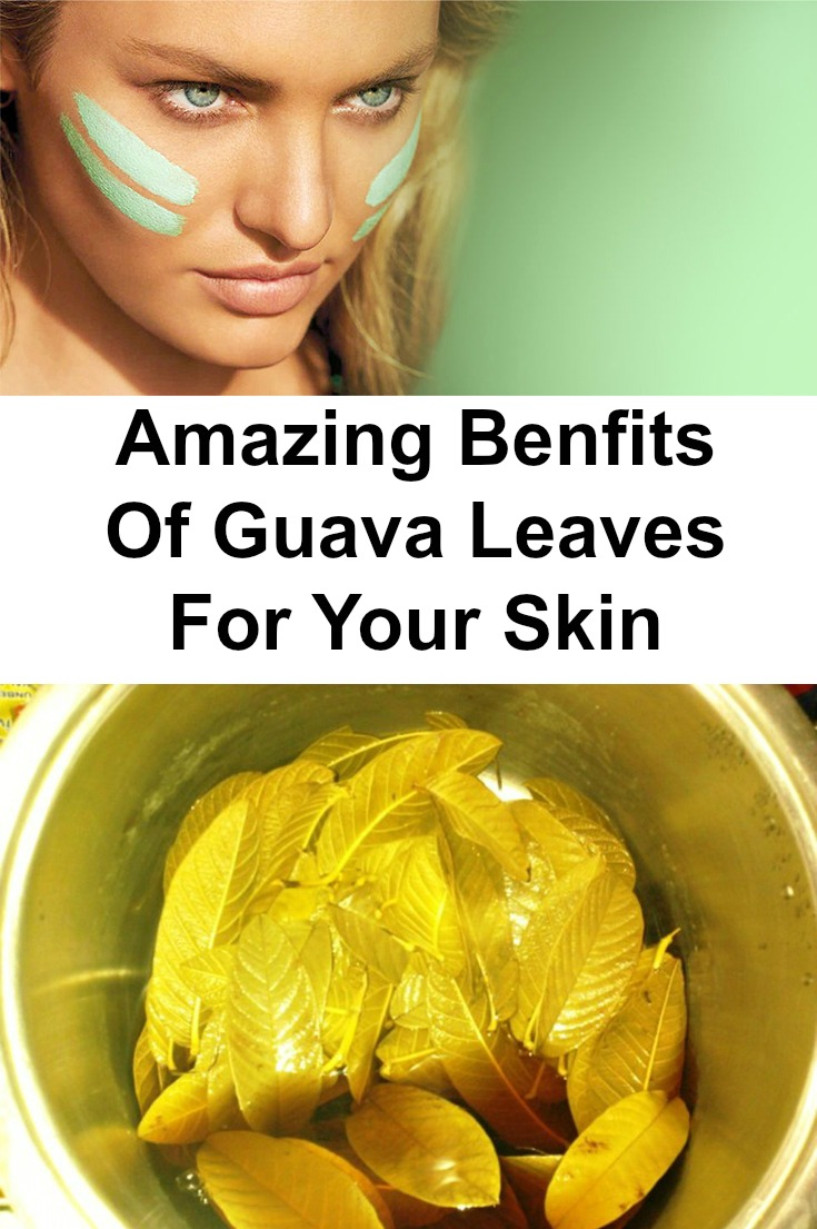 how to make an ointment out of guava leaves